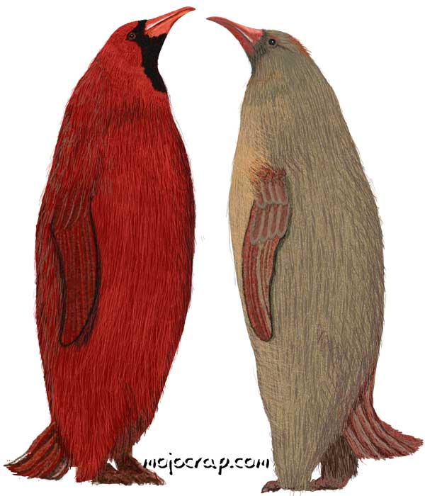 Cardinal Penguins